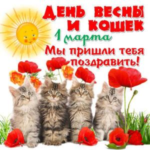 Открытки 1 марта день кошек
