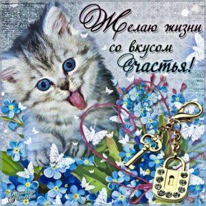 Желаю счастья картинки анимация. Котенок, цветы, с надписью, добрая открытка, желаю.