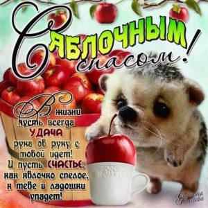 Веселая открытка